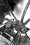 """""""Spider,"""" bronze sculpture by Louise Bourgeois."""