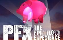 e7d1281a_spotlight_pinkfloyd.jpg
