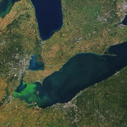 Scientists Say Lake Erie Toxic Algae Blooms Could Be Part of Climate Change Loop