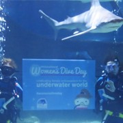 Greater Cleveland Aquarium to Celebrate International Women's Dive Day in July