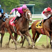 5 Cleveland Spots You Can Cheer On Your Kentucky Derby Horse This Weekend