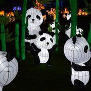 Asian Lantern Festival to Light Up Cleveland Metroparks Zoo Once Again This Summer
