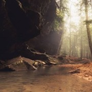 Teens Arrested in Connection with Death of Photographer Struck by Log at Hocking Hills State Park