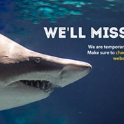 Greater Cleveland Aquarium Announces Temporary Closure Due to COVID-19