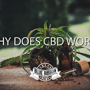 Why Does CBD Work?