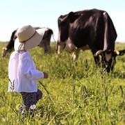 Ohio Farm Tour Series Back after Pandemic Pause