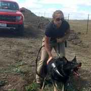 How Did an Ohio Kennel Get Involved in Dakota Access Pipeline Security?