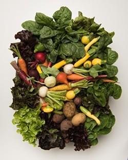 chefs-garden-courtesy-chefs-garden.jpg