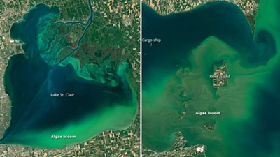Algae blooms are growing in Lake St. Clair and Lake Erie (right) - NASA
