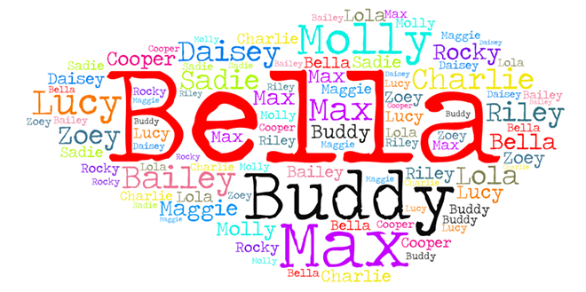Wordcloud of Cleveland's most popular dog names