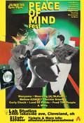 Peace of Mind Fest