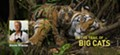 National Geographic Live! On the Trail of Big Cats
