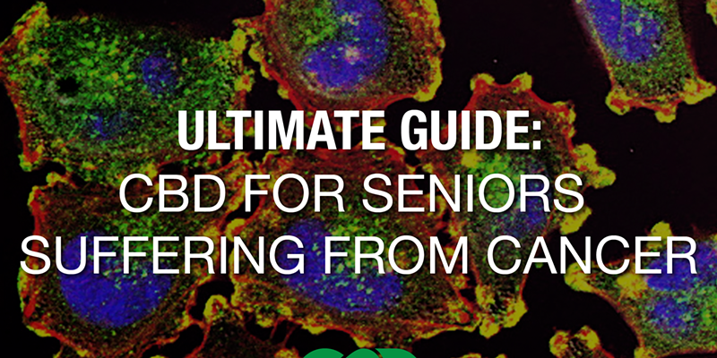 The Ultimate Guide to CBD and Seniors with Cancer
