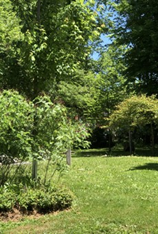 A Community Rain Garden or Another Single-Family Home? University Heights Seems to Have Already Decided the Fate of One Lot