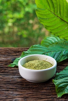 Green Malay Kratom: Focus Your Mind & Relieve Stress