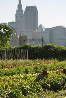 This six-acre urban farm in Ohio City is the site of the annual Refugee Response benefit.