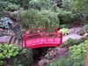 The Japanese Garden at Cleveland Botanical Garden.
