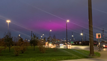 It's That Time of Year When Clevelanders Can Enjoy a Purple Glow Over the City Thanks to Green City Growers