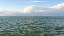 Industrial Ag Runoff Seen as Major Threat to Lake Erie