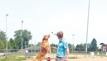 A Guide to Northeast Ohio's Best Dog Parks