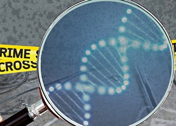 The True Story of Two Women Using DNA to Solve America's Most Puzzling Cold Cases