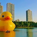 The World's Largest Rubber Duck Sails Through Lake Erie This Weekend