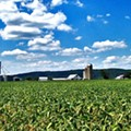 Census of Agriculture Reveals Bright Spots, Challenges for Ohio Farming