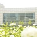 BioEnterprise Subpoenaed Over MedMart Business