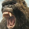 Latest 'King Kong' Iteration is Standard Heart-Pounding Fun