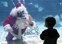 PHOTO COURTESY OF THE GREATER CLEVELAND AQUARIUM - Scuba Claus returns to the Greater Cleveland Aquarium. See: Friday.