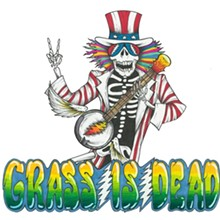 bacdd927_grass_is_dead_.jpg