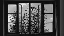 24_frames.jpg