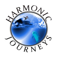 Uploaded by Harmonic