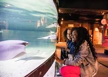 courtesy_of_the_greater_cleveland_aquarium.jpg