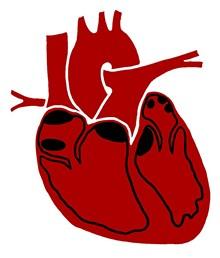 heart_burned_png-magnum.jpg