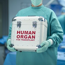 6b56b12d_organs.jpg