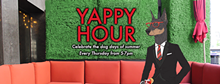 4c62bc8c_yappy-hour-fb-cover_2_.png