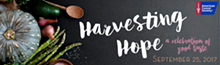 d1bc3b27_harvesting_hope_small_banner.png