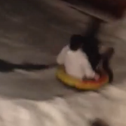 VIDEO: Northeast Ohio Family Builds Epic Sledding Chute in Backyard