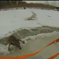 VIDEO: Watch a Man Rescue a Deer from the Icy Chagrin River