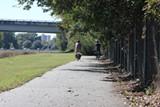 Along the Truman Linear Park trail