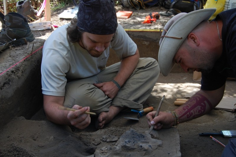 Archaeology continues at the possible de Soto encampment in Telfair County, GA.
