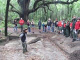 In the shadow of a 400 year-old live oak, Archeologist Rita Elliot shows visitors the excavation near King George Blvd. The tree will saved in the new highway expansion.