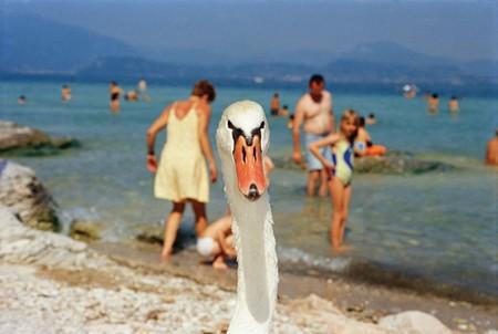 Lake Garda, Italy, 1999