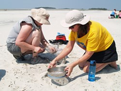 Participants in a July 2014 teacher's workshop focusing on marine debris sift through the sands of Tybee Island in search of microplastic particles.