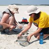 UGA Skidaway Institute of Oceanography brings new focus to marine trash issue