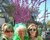 Saint Patrick's Day 2011