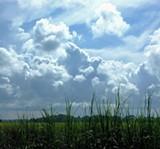 sept3rd2008.jpg