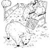 Sheep instead of lawnmowers?
