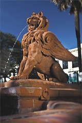 SAVANNAH CVB - The lion in better days